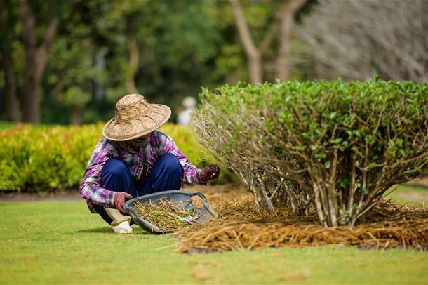 Tildekket kvinne jobber i hagen